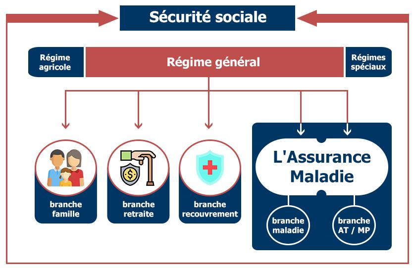 présentation des 3 régimes et des 5 branches de la Sécurité sociale